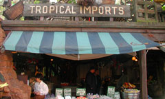tropical-imports_thumb