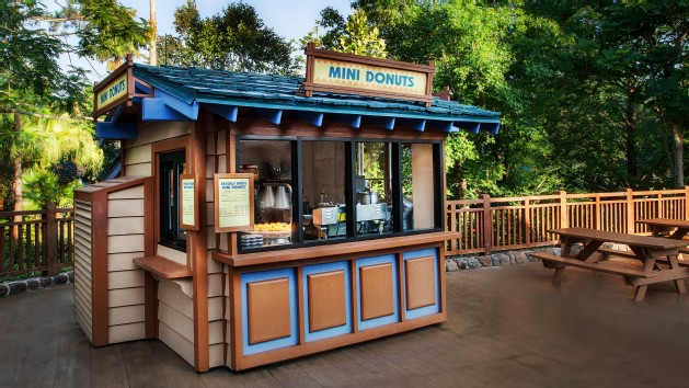 blizzard-beach-mini-donuts-00