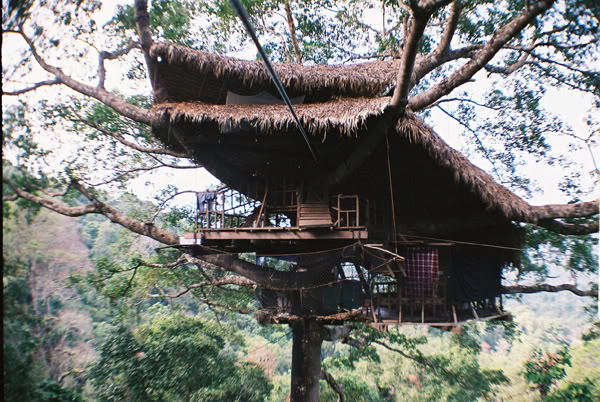 10. The Gibbon Experience Treehouse, Bokeo Reserve, Laos