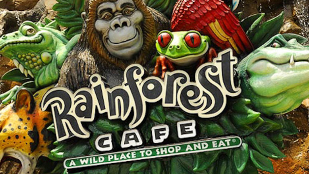 rainforest-cafe-shop-00