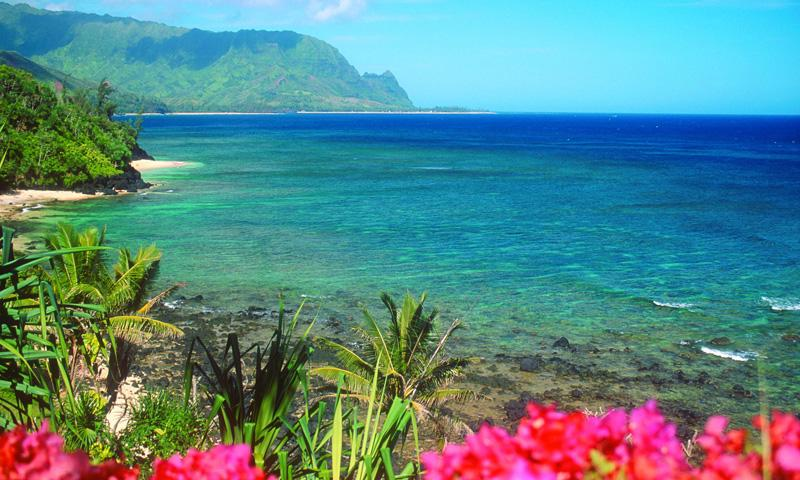 my personal experience of vacation in hawaii Why should we visit hawaii for our honeymoon, romantic getaway or family vacation thanks for asking as a matter of fact, that's why we're here - to try.