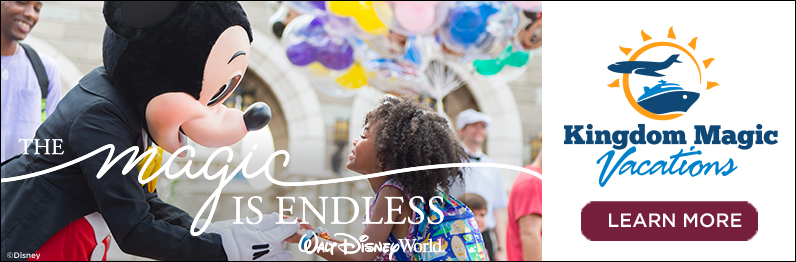 wdw-17-54134-dsm-wdw-national-campaign-endless-magic-web-banners-for-kmv-4v-job-796x262